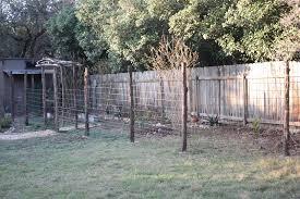 Rock Oak Deer The Fence Post Two