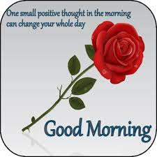 good morning messages and flower rose pictures gif aplikasi di