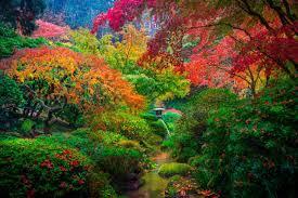 top 10 wonderful japanese gardens
