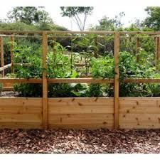 Garden Deer Fence Raised Garden Bed Outdoor Living Today In 2020 Raised Garden Raised Garden Beds Deer Fence