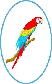 Amazon Com Tropical Red Yellow Blue Macaw Parrot Bird Vinyl Stained Glass Film Static Cling Window Decal Home Kitchen