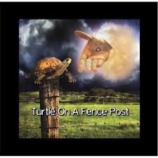 Billy Yarborough Turtle On A Fence Post Amazon Com Music