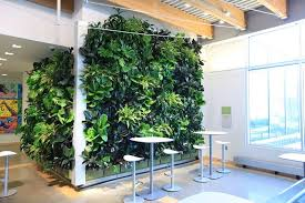 products livewall green wall system