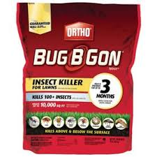 Get Lowes Ant Killer  Pics