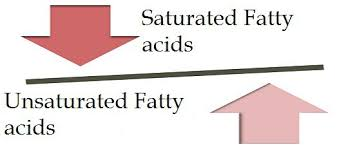 saturated and unsaturated fatty acids
