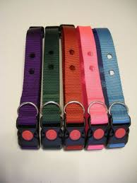 Genuine Invisible Fence Red Dog Collar R21 Compatable 801 System For Sale Online Ebay