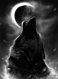 Pin by addie hill on Loup   Wolf wallpaper, Wolf howling, Wolf ...