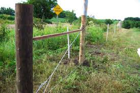 Building High Tensile Fence A Simple How To Guide Pasturepro