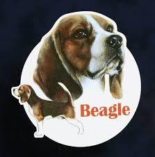 Dog Decal Beagle Sticker For Car Beagle Dog Decal Car Decal Gift Wall Decal Window Decal Vinyl Car Laptop Decal Dog Decals Dogs Laptop Decal