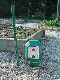 Vegetable Garden Electric Fence Pennlive Com