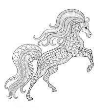 Leuk Voor Kids Steigerend Paard Dieren Kleurplaten Paarden