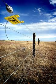 Electric Fence Introduction Blain S Farm Fleet Blog
