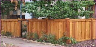 Short Privacy Fence With Metal Gate Indoor Garden Wood Fence Design Wood Fence Gates