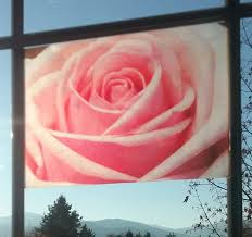 Pink Rose Window Cling Stained Glass Color Photo Window Etsy Window Clings Window Art Rose Window