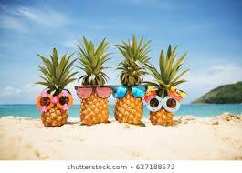 beach funny görseller stok fotoğraflar