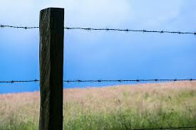Hd Wallpaper Fence Barbed Wire Pasture Fence Post Pile Demarcation Wallpaper Flare
