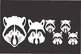 Amazon Com Raccoon Face Family Die Cut Vinyl Window Decal Sticker For Car Truck Laptop 3 5 X8 5 Kitchen Dining