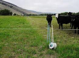 Flexible Grazing Cells Electric Fence For Cattle Cattle Electric Fence