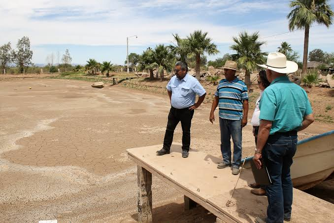 Resultado de imagen para AGRICULTOR EN MEXICALI