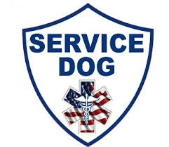 Service Dog Window Decals To Attach To Your Car Window