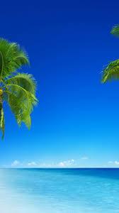 tropical beach 5k 4k wallpaper 8k