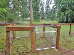Dog Gets Kicked Over Fence Fences Dog Fence Dog Park Dogs
