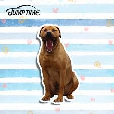 Jump Time 13cm X 7 3cm Japanese Tosa Dog Decal Funny Car Styling Car Sticker Laptop Vinyl Pet Graphic Waterproof Accessories Car Stickers Aliexpress