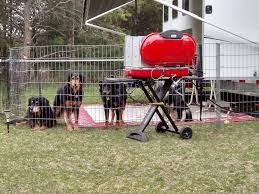 4 Ex Pens Around Camper Door With Short Plastic Garden Fence Under Door Step Keeps All The Dogs In Your Site And Not Camper Dog Camper Living Dog Camping