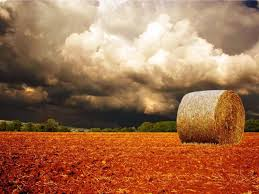 nature fields clouds longhorn red storm gray rab quotes
