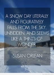 sky falling snow