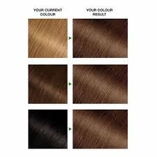 Garnier Nutrisse Golden Brown 5 3 Permanent Hair Dye Wilko