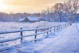Snow Fence 101 Doityourself Com