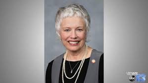 Rep. Susan Fisher (D) - NC House District 114 | WLOS
