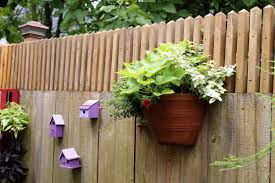 How To Get A Little Extra Privacy Above A Fence Gardening Q A With George Weigel Fence Planters Fence Plants Privacy Fence Designs