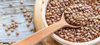 lentils nutrition good for the gut or
