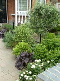 small front gardens planting gems