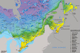 cold hardiness and hardiness zones