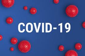 COVID-19: o que é, sintomas, transmissão, prevenção - Biologia Net