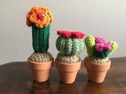 mini cactus set mini succulent cactus