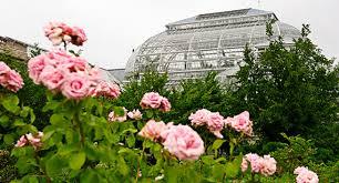 the 10 best college botanical gardens