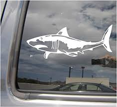 Amazon Com Right Now Decals Great White Shark Jaws Cars Trucks Moped Helmet Hard Hat Auto Automotive Craft Laptop Vinyl Decal Store Window Wall Sticker 01059 Home Kitchen