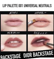 dior backse lip palette s