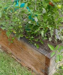 Electric Slug And Snail Fence Gardening Slug Snail Barrier Protection For Garden Plants Easy To Use Easy To Install Kit Raised Beds