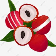 فاكهة الليتشي الليتشي الفاكهة الحمراء الأخضر الليتشي