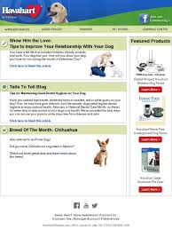 Havahart Wireless Celebrate Your Relationship With Your Dog Breed Of Month Chihuahuas Milled
