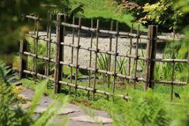 Japanese Bamboo Garden Design Jajlindulu