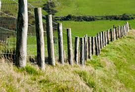 ᐈ Old Fence Posts Stock Pictures Royalty Free Fence Post Images Download On Depositphotos