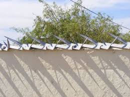 The Introduction Of Wall Spike Hebei Zhengyang Wire Mesh Products Co Ltd