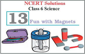ncert solutions cl 6 science chapter
