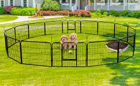 The Best Portable Dog Fence To Buy In November 2020
